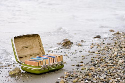 valises-de-livres2.jpg