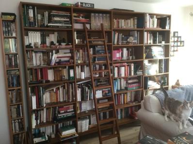 bibliotheque-histoire